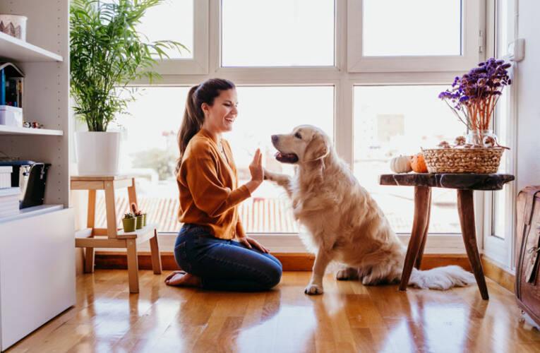 Imiona dla psa – Lista imion dla suczki i samca
